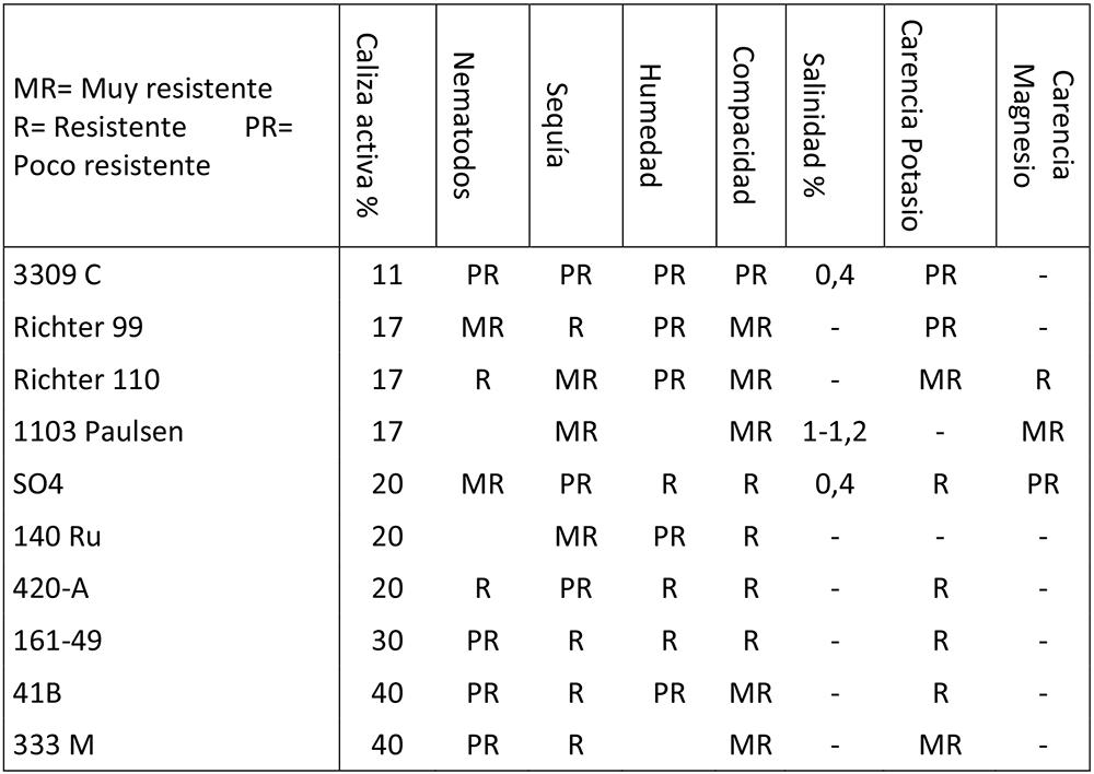tabla-resistencia-portainjertos